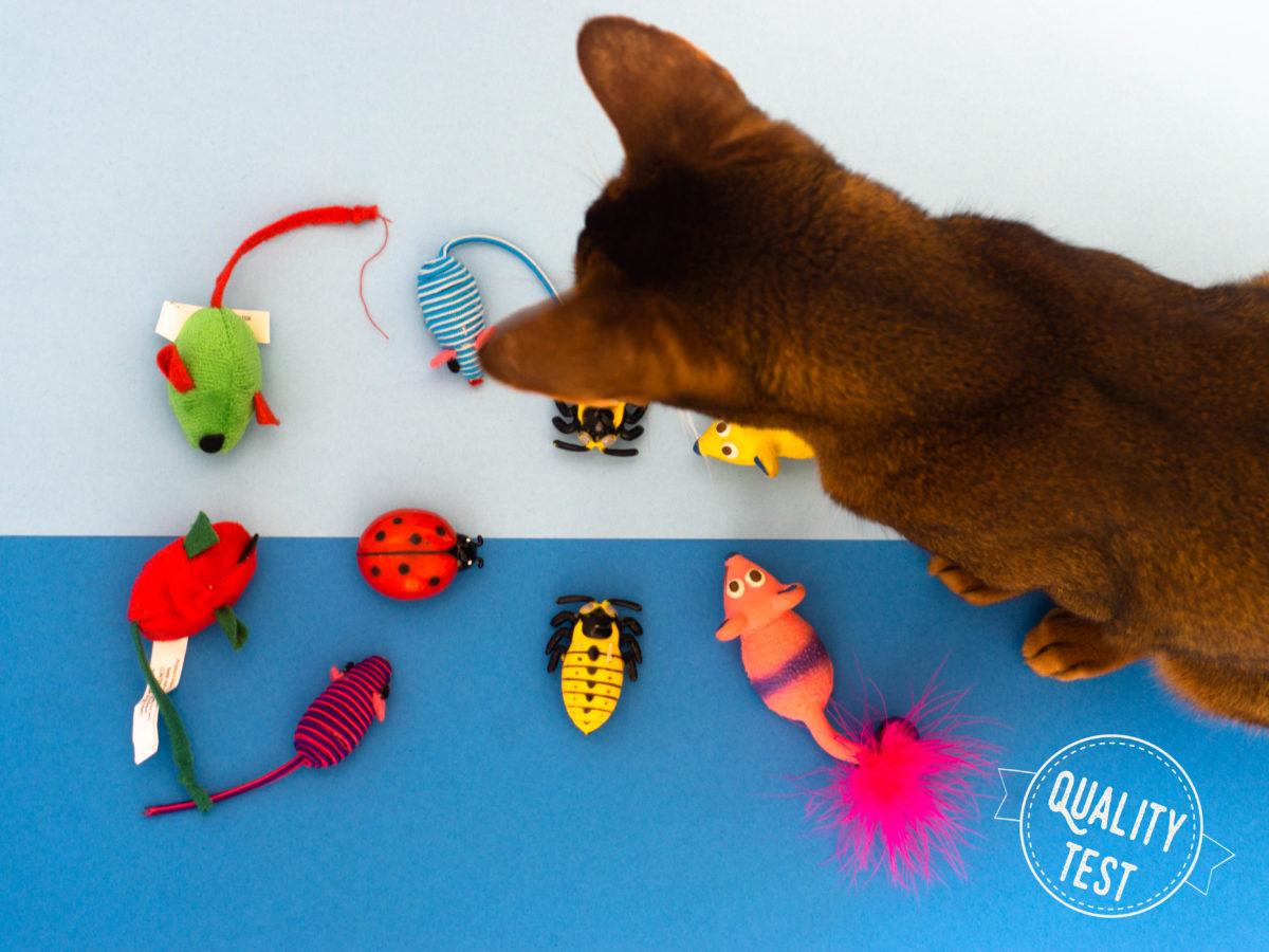 DSC03729 - 7 zabawek, które Twój kot (być może) pokocha!