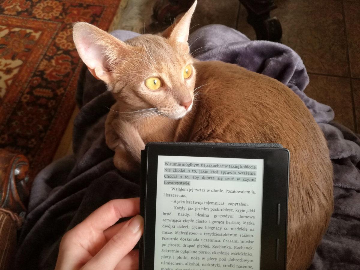 kindle glowne 1 - Jaki czytnik wybrać i dlaczego Kindle?