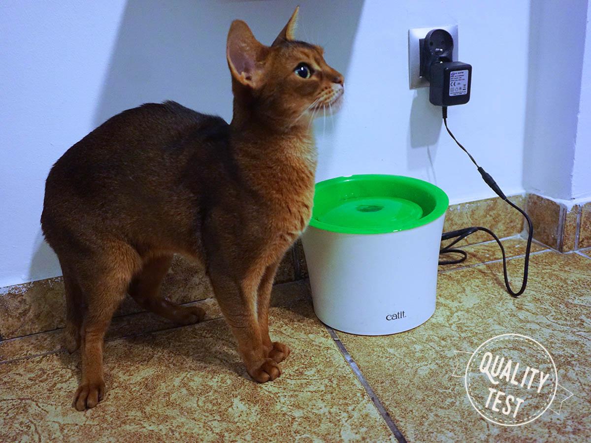 fontanna catit - Designerskie akcesoria dla kotów
