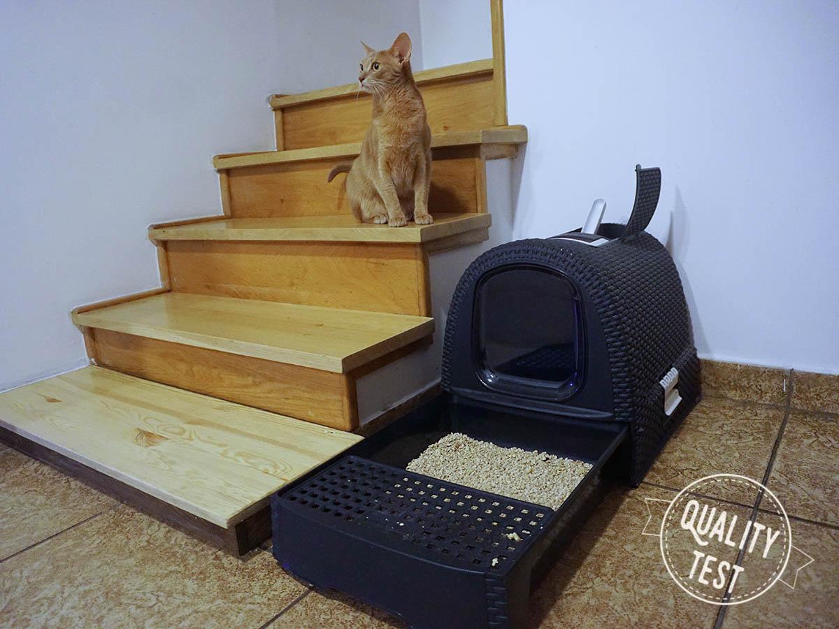 kuweta curver - Designerskie akcesoria dla kotów