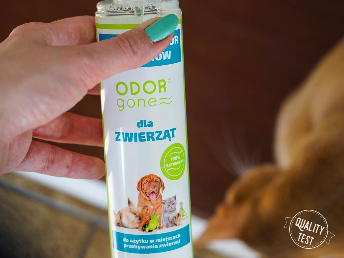 DSC06903 - OdorGone - neutralizator zapachów kota