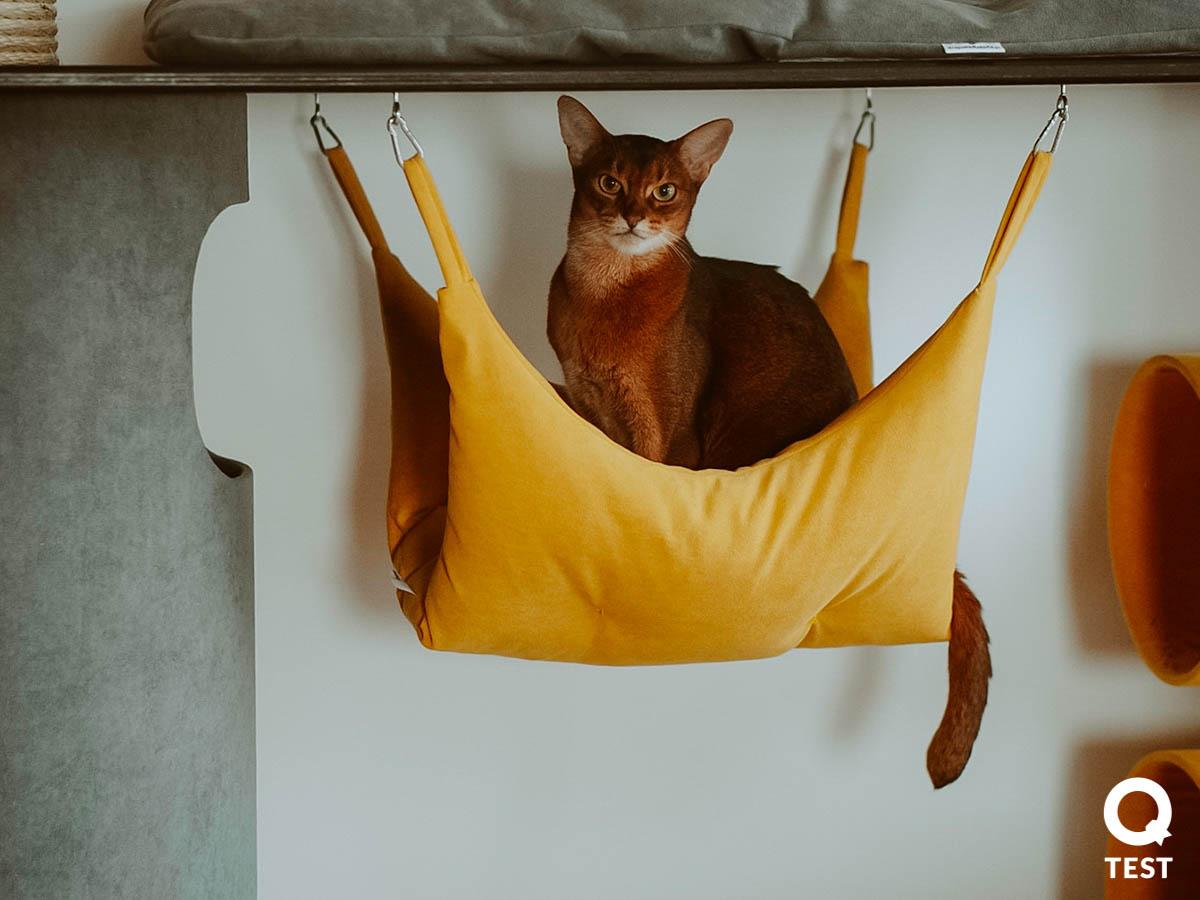 drapak dla kota 5 - Drapak dla kota - jak wybrać najlepszy?