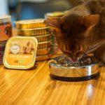 karmy dla kotow renske glowne 150x150 - OdorGone - neutralizator zapachów kota