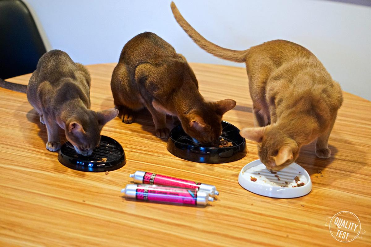 meatlove karma dla kota 16 - Pussy Deluxe od MEATLOVE - karma dla kota
