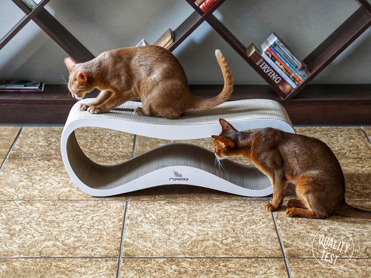 mykotty 10 - MyKotty - stylowe meble dla kotów