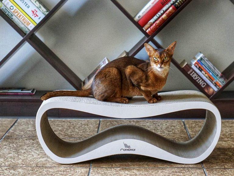 mykotty 12 1 768x577 - MyKotty - stylowe meble dla kotów
