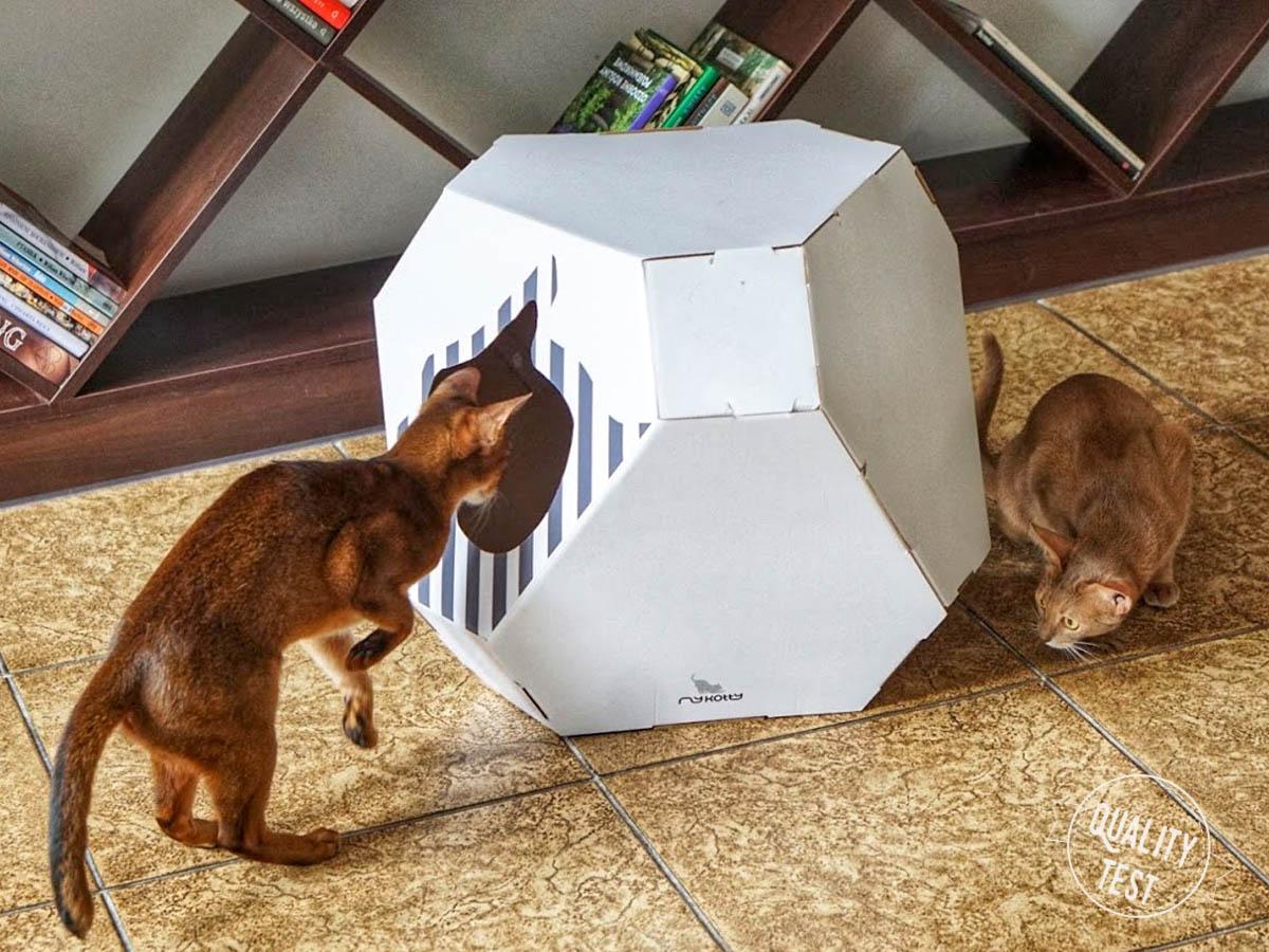 mykotty 2 - MyKotty - stylowe meble dla kotów