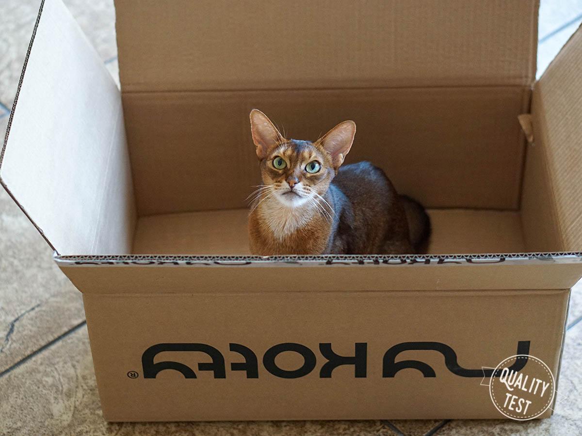 mykotty 29 - MyKotty - stylowe meble dla kotów