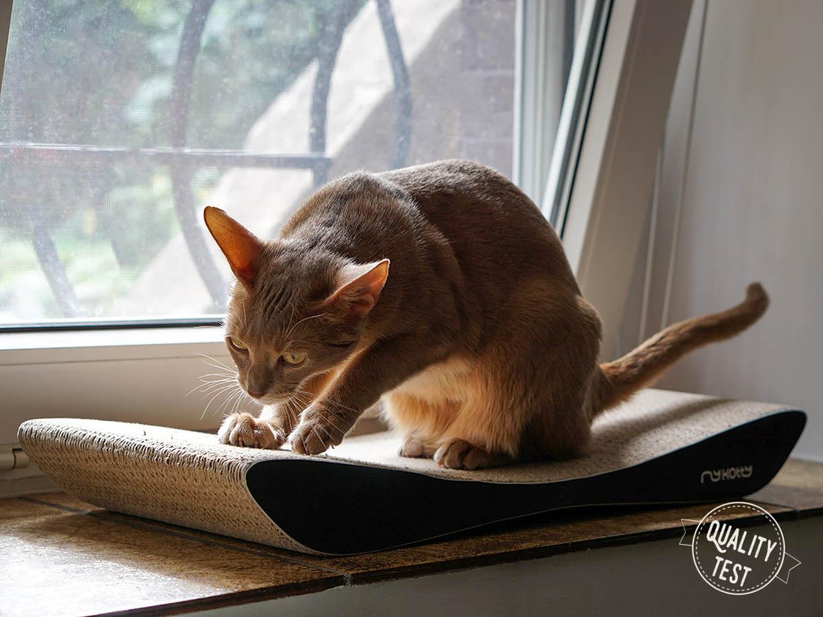 mykotty 44 - MyKotty - stylowe meble dla kotów
