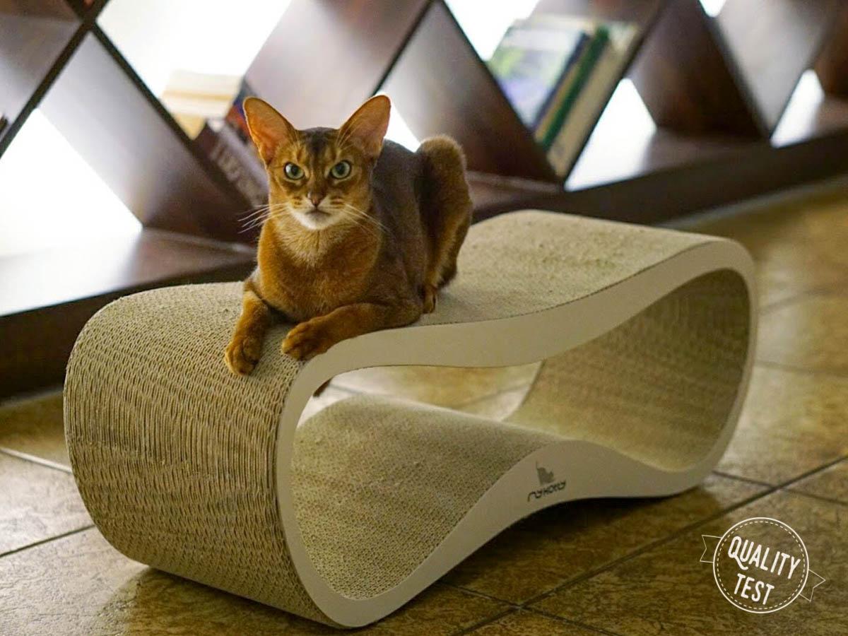 mykotty 5 - MyKotty - stylowe meble dla kotów
