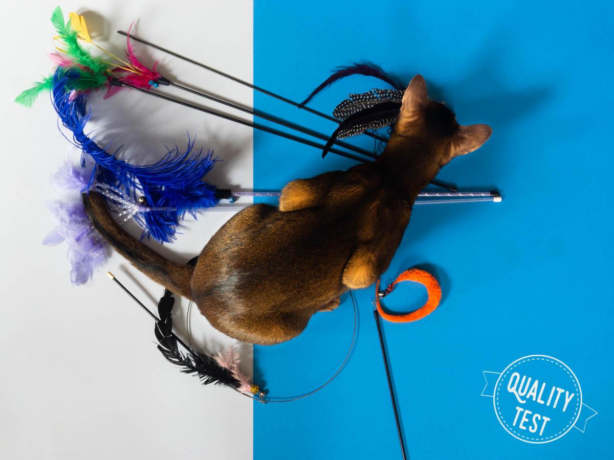 pioradlakotow - 7 zabawek, które Twój kot (być może) pokocha!
