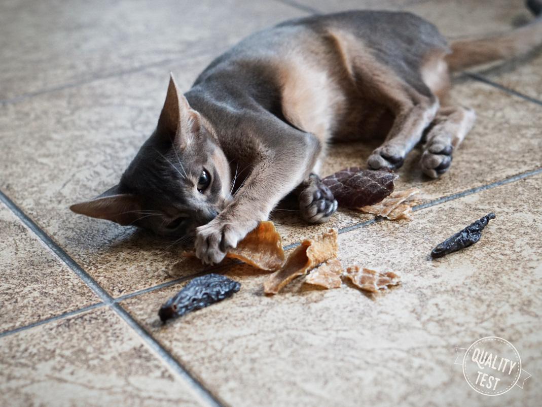 przysmaki dla kotow samo mieso 15 - Przysmaki dla kotów Samo Mięso