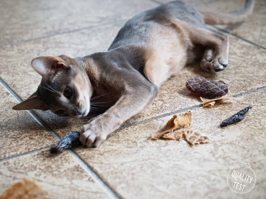 przysmaki dla kotow samo mieso 17 - Przysmaki dla kotów Samo Mięso