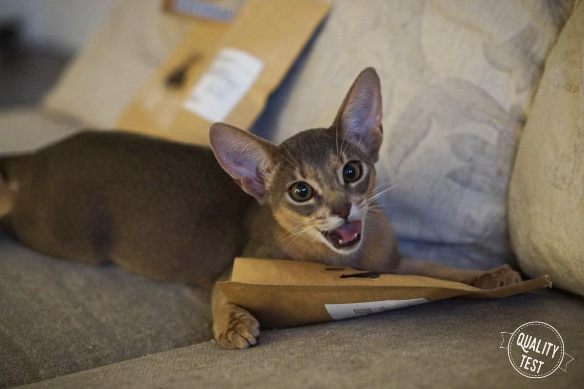 przysmaki dla kotow samo mieso 9 - Przysmaki dla kotów Samo Mięso