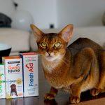 scanvet 1 150x150 - Przysmaki dla kotów Samo Mięso