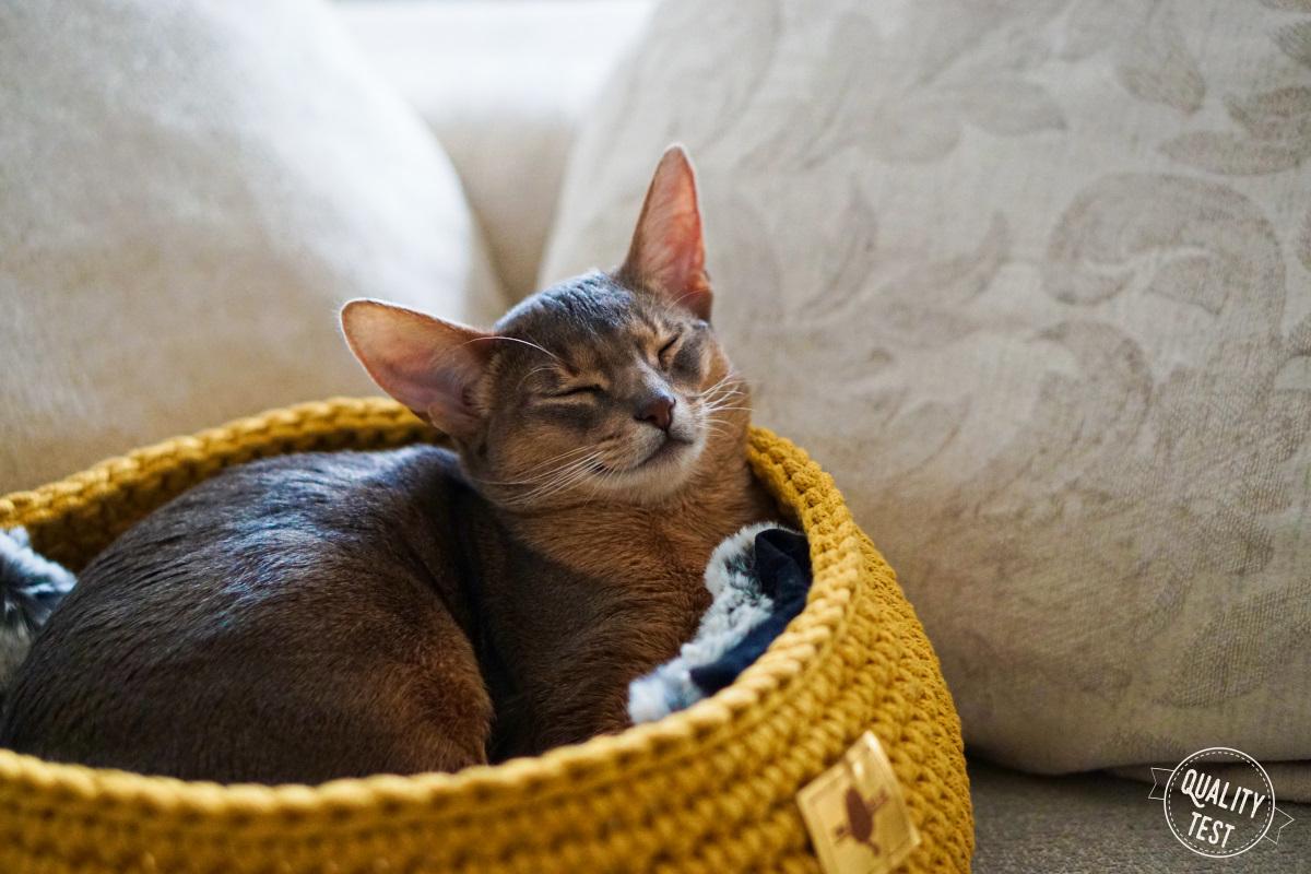 the miss cat legowisko dla kota 1 - THE MISS CAT - przytulne legowisko dla kota