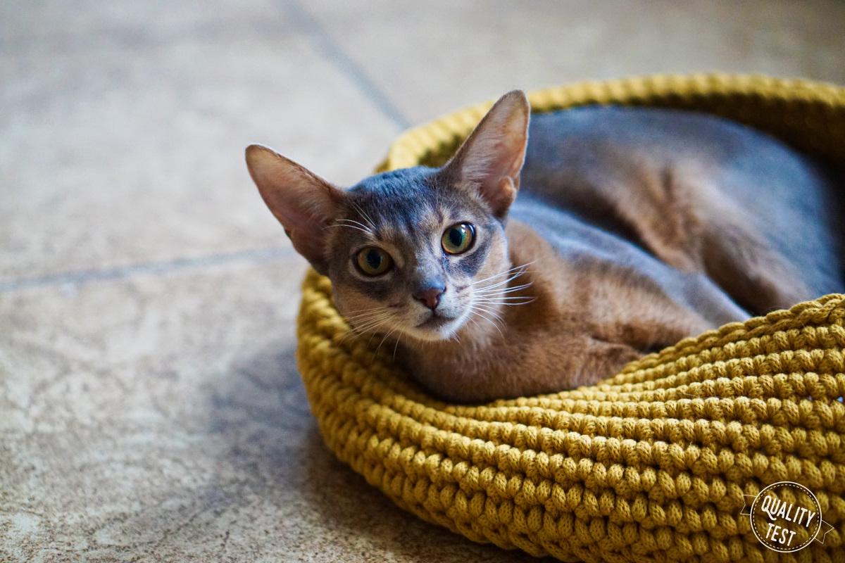 the miss cat legowisko dla kota 22 - THE MISS CAT - przytulne legowisko dla kota
