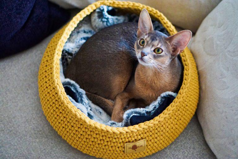 the miss cat legowisko dla kota 3 1 768x512 - THE MISS CAT - przytulne legowisko dla kota