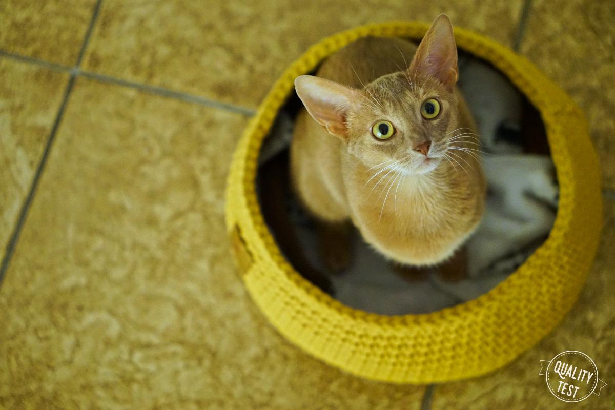 the miss cat legowisko dla kota 7 - THE MISS CAT - przytulne legowisko dla kota
