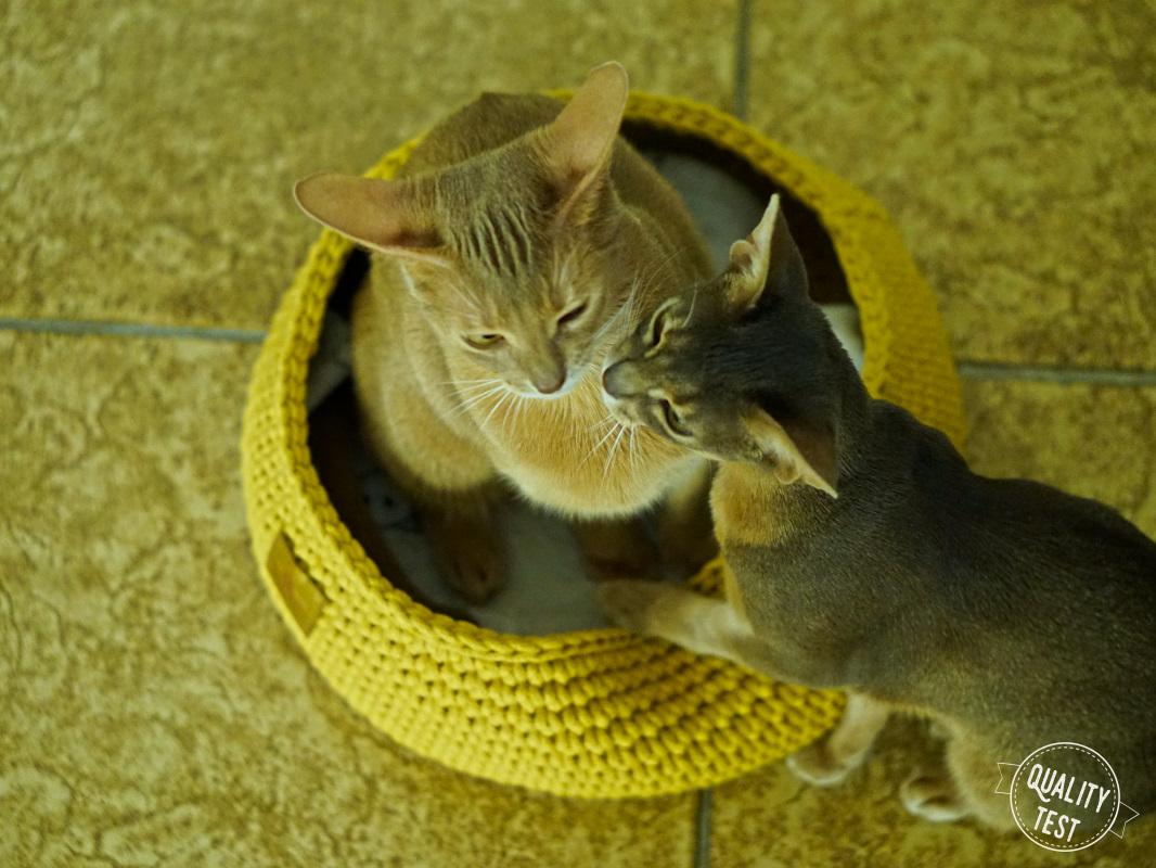the miss cat legowisko dla kota 9 - THE MISS CAT - przytulne legowisko dla kota