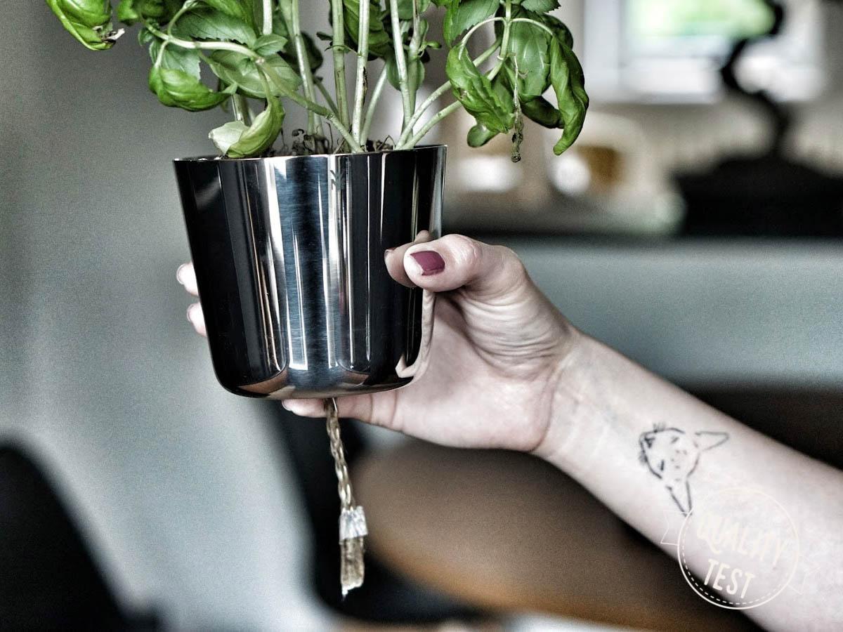 ziola w kuchni wmf - Zioła w kuchni – 3 gadżety, które warto mieć
